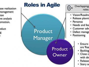 product-manager-product-owner-roles