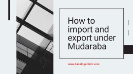 How to import and export under Mudaraba